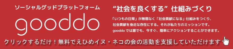 gooddo 愛媛県愛護センター アイスタイル ホームページ制作 nekowan