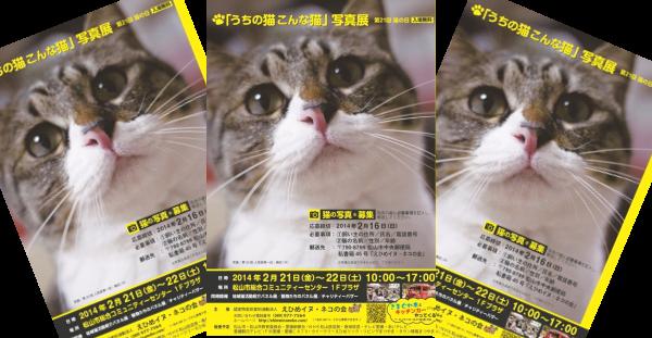 平成26年2月21日 猫の日 第21回 うちの猫こんな猫写真展 愛媛 えひめイヌ・ネコの会 アイスタイル aistyle ホームページ制作