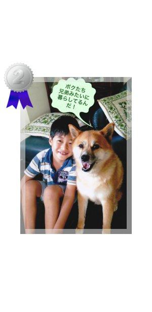 ランキング 2位  愛媛 えひめイヌ・ネコの会 アイスタイル aistyle ホームページ制作