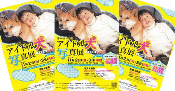 11月2日 犬の日 第20回 我が家のアイドル犬大集合 愛媛 えひめイヌ・ネコの会 アイスタイル aistyle ホームページ制作
