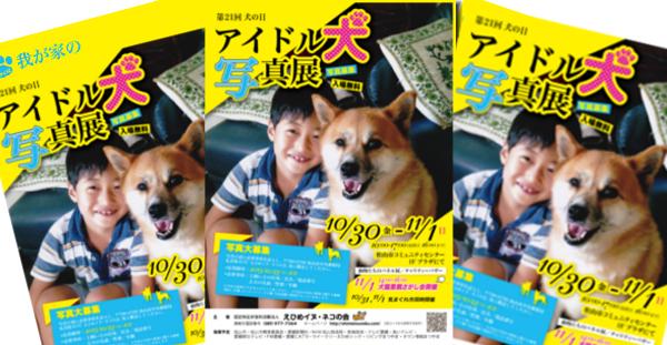認定NPO法人 えひめイヌ・ネコの会 犬の日 イベント アイスタイル